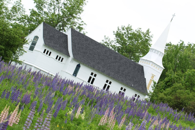 Church with lupine in foreground