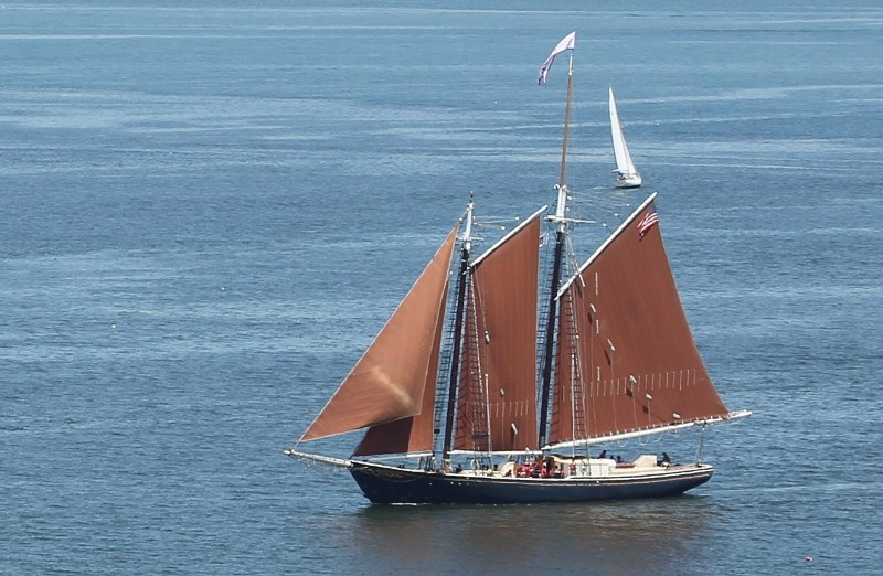 Schooner Roseway sailing Boston Harbor
