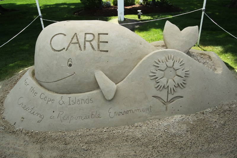 "Sand sculpture of whale saying ""CARE"""