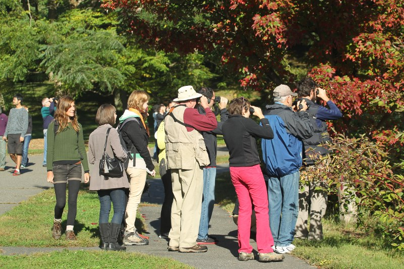 Bird walk group
