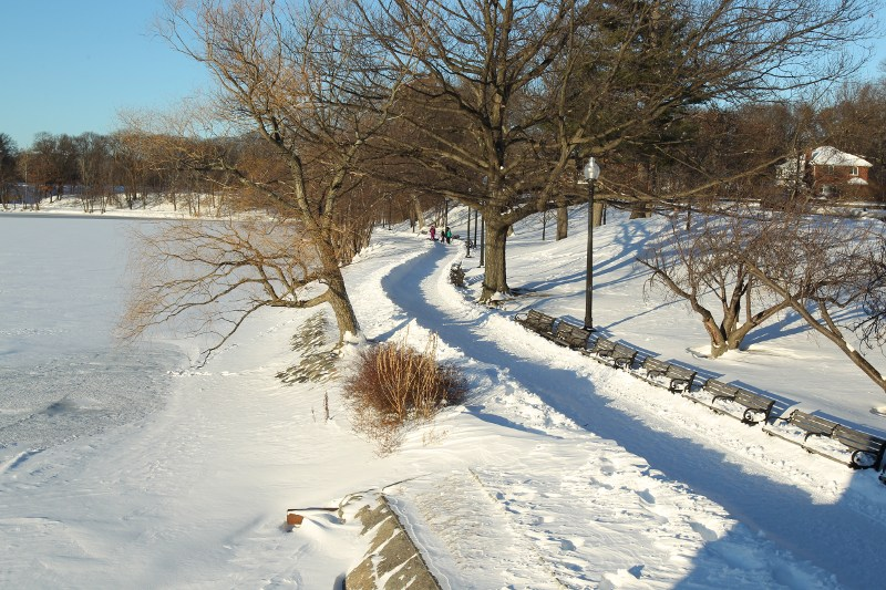 Jamaica Pond after a snowfall