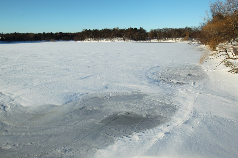 Iced-over Jamaica Pond