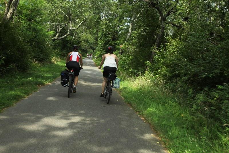 Biking Cape Cod rail trail