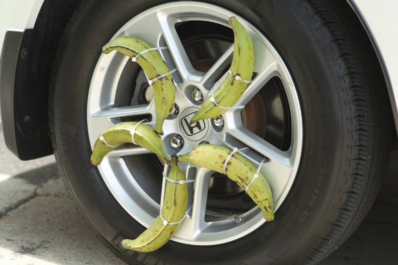 Plantain hubcap